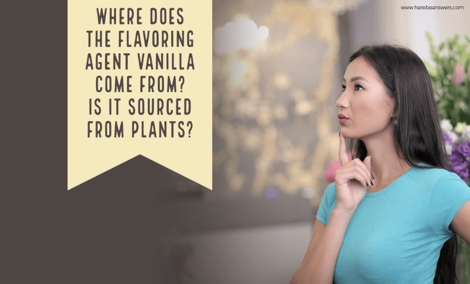 Where does the flavoring agent vanilla come from Is it sourced from plants