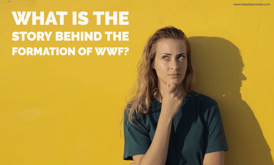What is the story behind the formation of WWF
