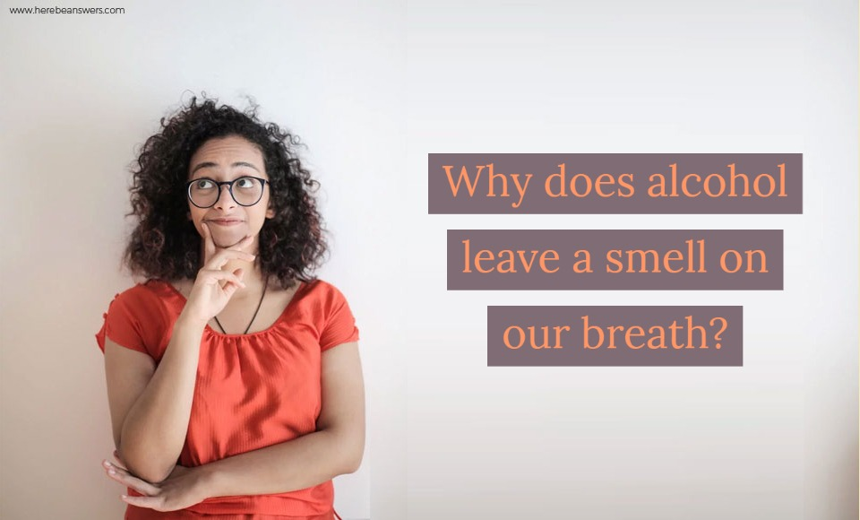 Why does alcohol leave a smell on our breath?